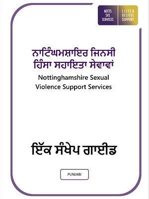 Punjabi-Guide-to-Service